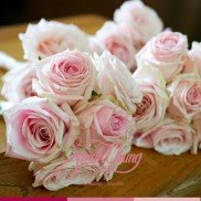 Bouquets pink2
