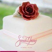 Sarah Young Cakes 2014 005