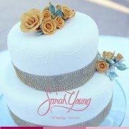 Sarah Young Cakes 2014 008