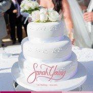 Sarah Young Cakes 2014 017