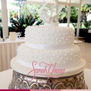 Sarah Young Cakes Gallery 2014 007