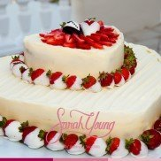 Sarah Young Cakes Gallery 2014 008