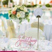 Sarah Young Set Ups 2014 046