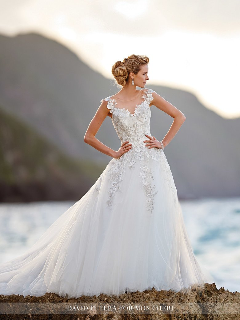 Image courtesy of: https://moncheribridals.com/browse/wedding-dresses/david-tutera-for-mon-cheri/216238-jay/